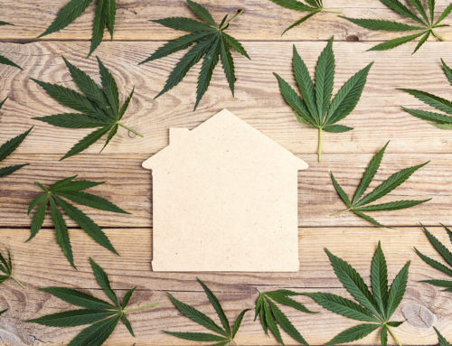 The legalization of Cannabis- what does this mean for Toronto Real Estate?